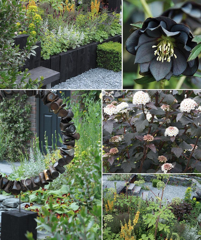 giardino nero composit1